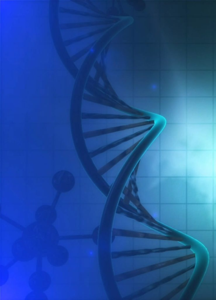 Chemical modifications DNA
